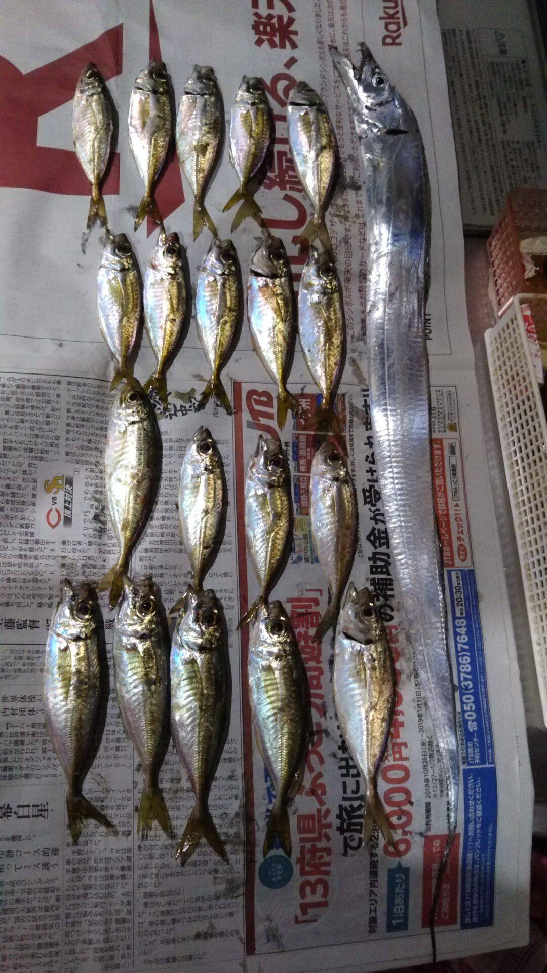 アジング大漁祭り
